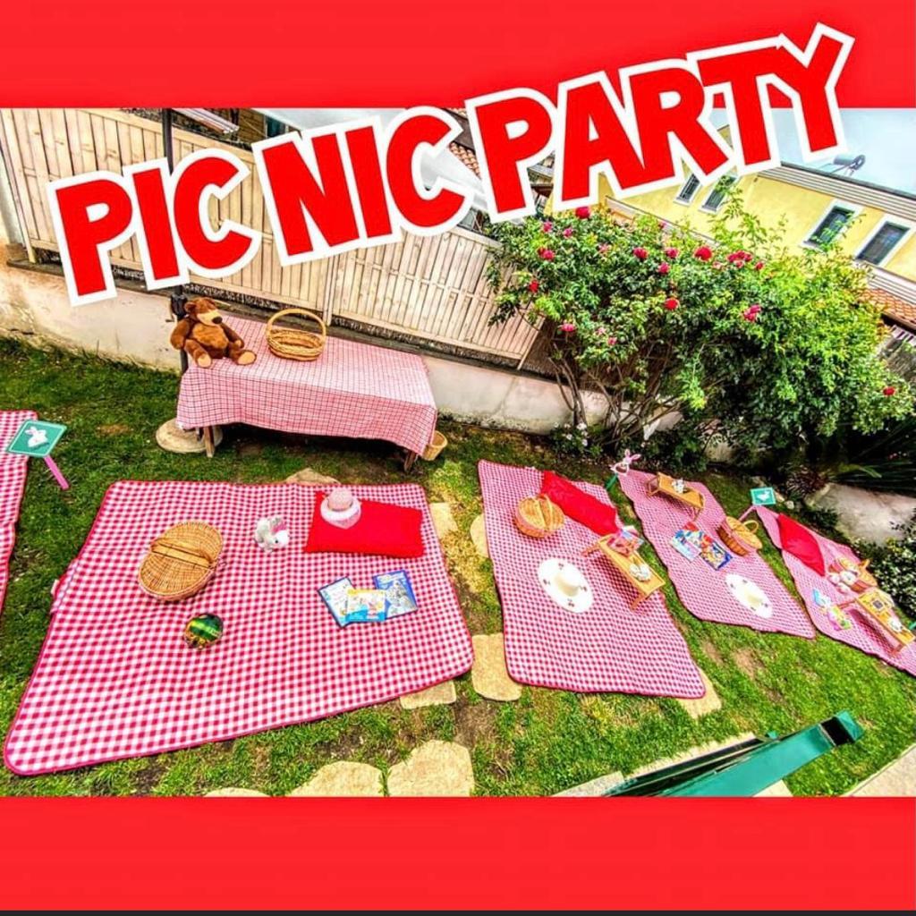 Festa a tema Picnic